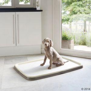 1_190792_puppy_trainer_starter_set_04_0