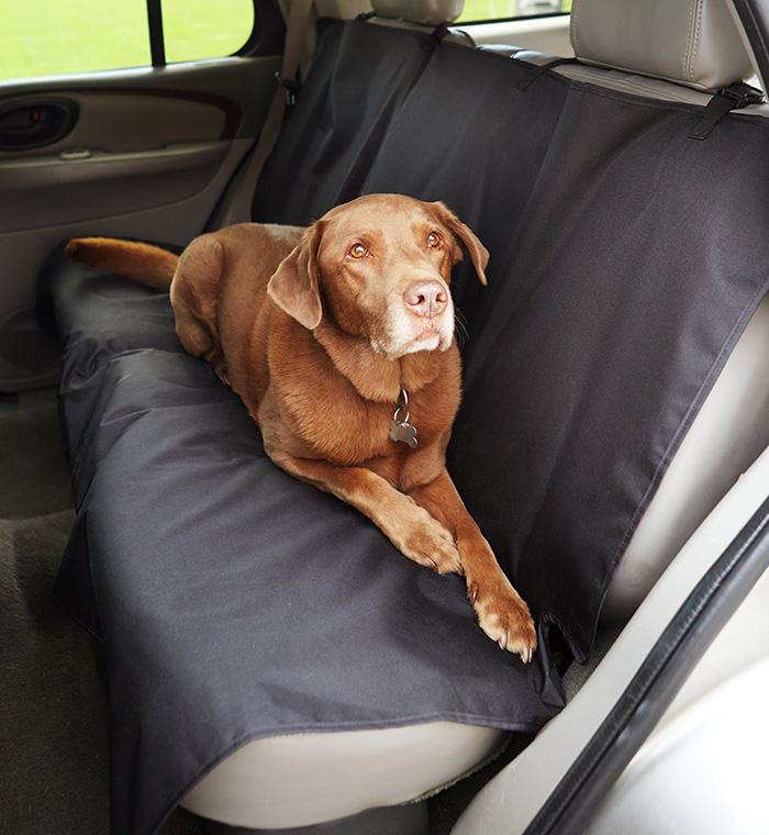 hund im auto die besten autoschondecken f r unterwegs. Black Bedroom Furniture Sets. Home Design Ideas