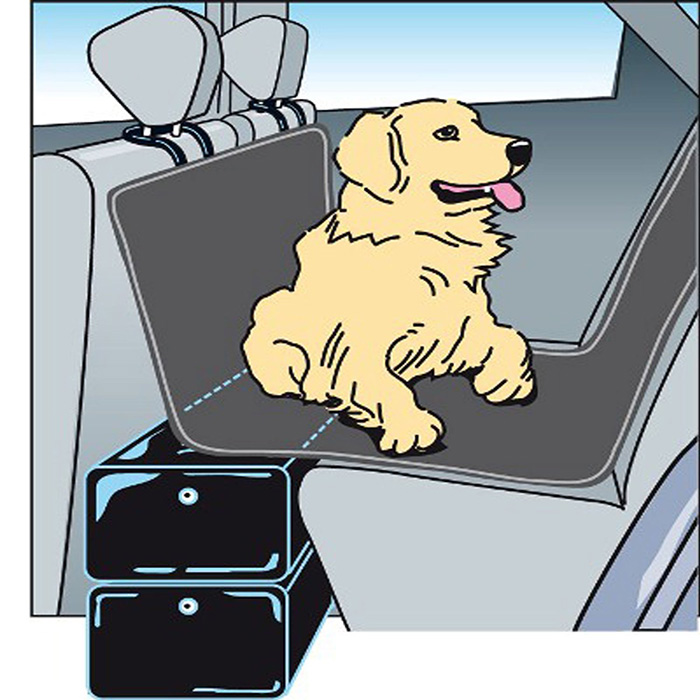 GAPFILL-Hund-im-Auto