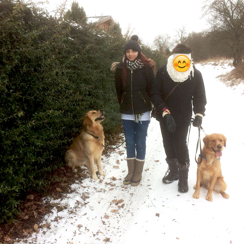 Golden Retriever Marley mit Arthus