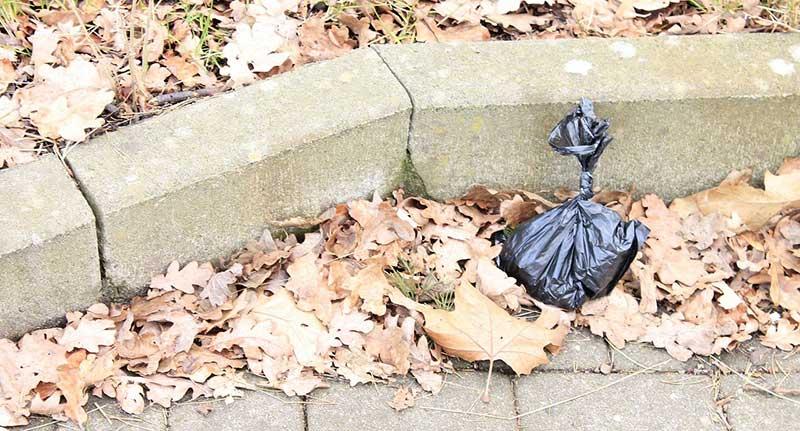 Hunde Kotbeutel weggeworfen