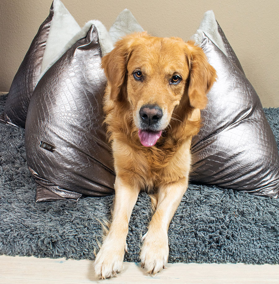 Luxus Hundebett Flum Manufaktur